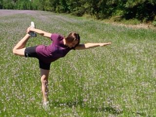 about  alligator healing arts yoga