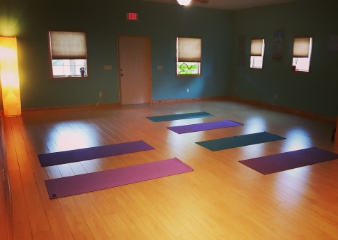 View of Suwannee River Yoga practice space